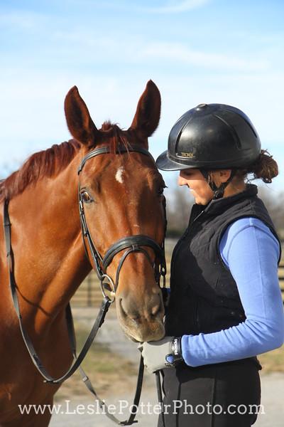 Chestnut Dressage Horse with Rider