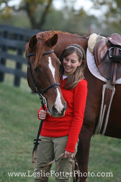 Chestnut Sport Horse with Rider
