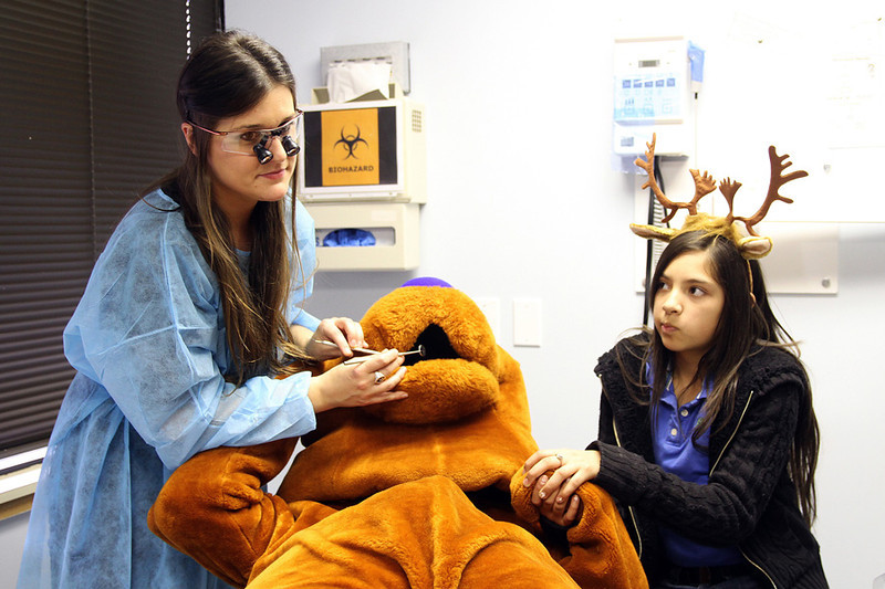"Margaret Michalec (DDS) checking ""Bear""'s teeth at The Pasadena Health Center, as friend Vanessa lends her support."