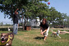 Raymond McChristian and Jennifer Webb-Shapley conducting playtime with some of the dogs at the Bay Area SPCA.