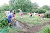 z6 community garden