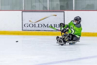 HOPE_SledHockey_09©UTM2020