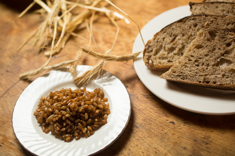 12/28/16 Concord, Mass. -- Rye berries and rye sourdough bread at Bondir in Concord, Mass. December 28, 2016. Erik Jacobs for the New York Times