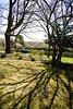 4/26/08 Middletown, RI -- The walled orchard and freestanding teahouse which sits on 8.5 acres at 330 Gray Craig Rd on the market for $6.95 million in Middletown, RI, 2008.  Erik Jacobs for the New York Times <br /> 30060965A