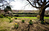 4/26/08 Middletown, RI -- 330 Gray Craig Rd on the market for $6.95 million in Middletown, RI, 2008.  Erik Jacobs for the New York Times <br /> 30060965A