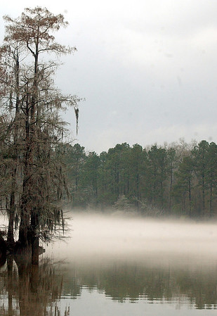 Fog on the Neches River