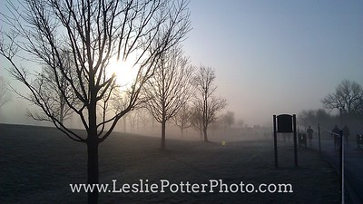 Foggy Sunrise at Keeneland Race Course