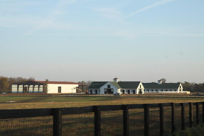 New Vocations at Mereworth Farm