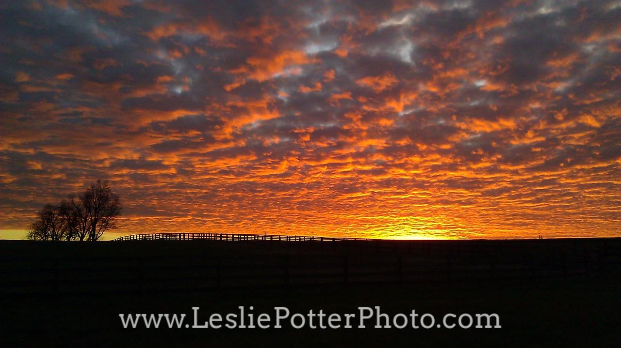 Sunset Over a Horse Farm