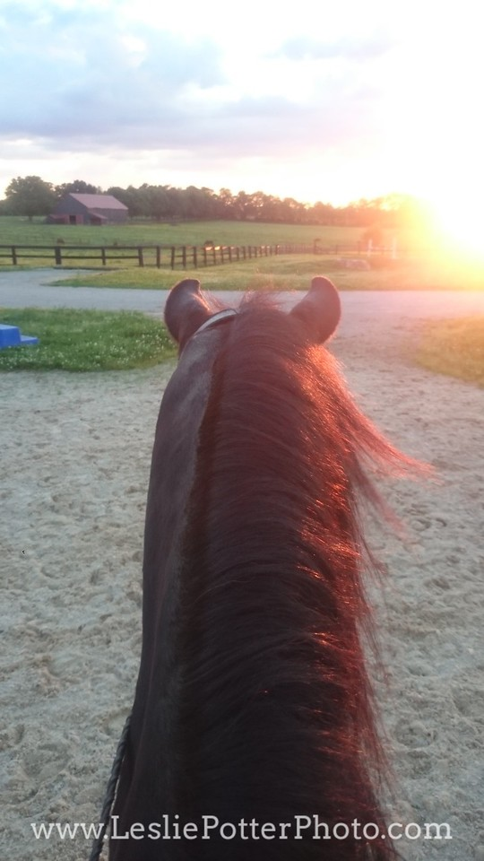 Riding a Horse Into the Sunset