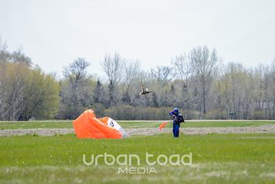 Skydive39©UTM2014