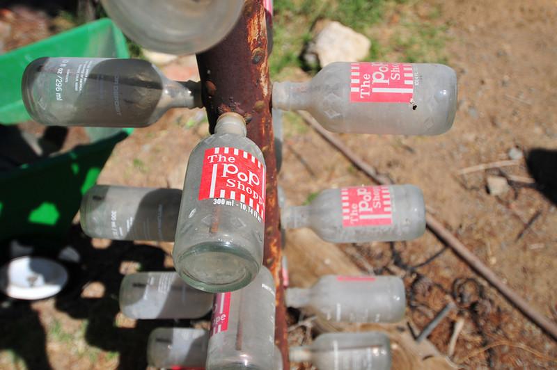 Bottletree Farm 28