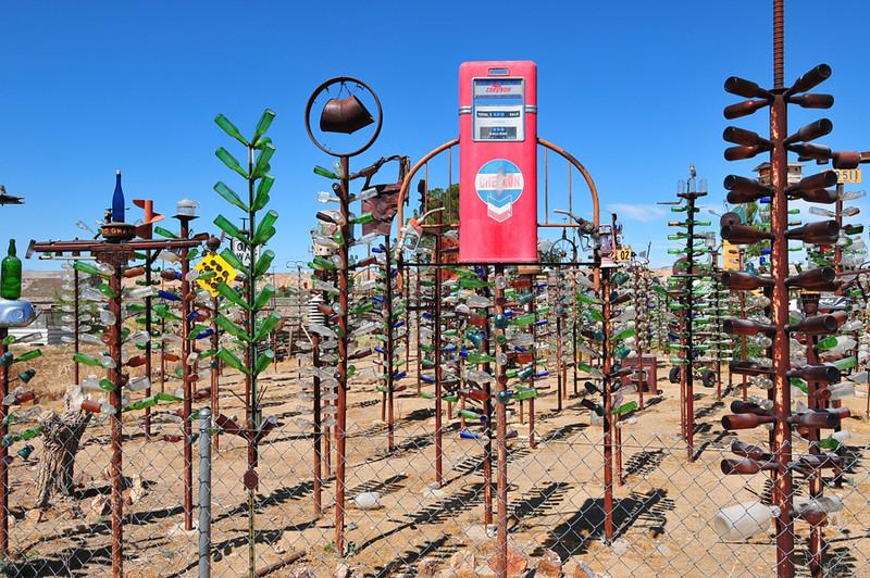 Bottletree Farm 31