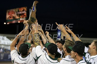 St. Mark's celebrates after winnibg the 2016 DIAA Baseball Championship at Frawley Stadium, Tuesday, May 31, 2016. wwwDonBlakePhotography.com