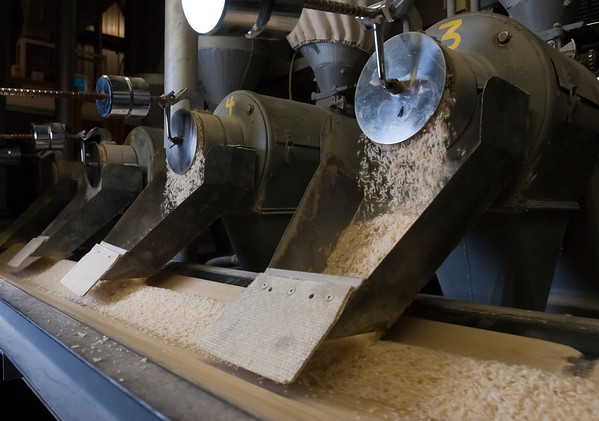 Rice falls out f the mill on its way to be packaged at Doguet's Rice Milling Company in Beaumont, Texas.<br /> Photo/Scott Eslinger  -  ©2013 Eslinger Photographics