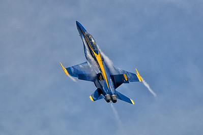 U.S. Navy Blue Angels
