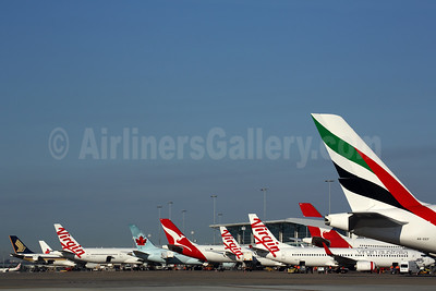 Airline Tails at Brisbane BNE (Rob Finlayson). Image: 935296.