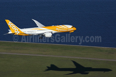 Scoot-flyscoot.com (Singapore Airlines) Boeing 787-8 Dreamliner 9V-OFB (msn 37118) SYD (Rob Finlayson). Image: 935262.