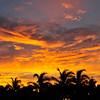 Florida - Fort Lauderdale-10