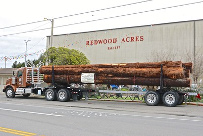 A load of redwood logs awaits the successful bid at the auction being held at the Arcata Community Center on Friday at 6 for the 79th Anniversary Banquet for the 2017 Logging Conference. (Jose Quezada - For the Times-Standard)