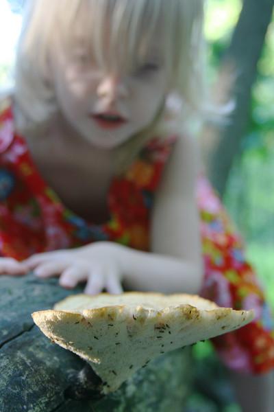 Little girl studies a mushroom.