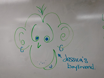 Jessica's monkey, Lavender or Jasmina's caption. 27-Oct-11