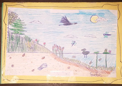 Young Naturalist's Art Page