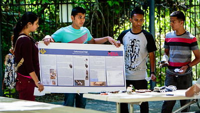 3'x8' technical display, shrunk to a convenient 2'x5' size, used during oral presentation