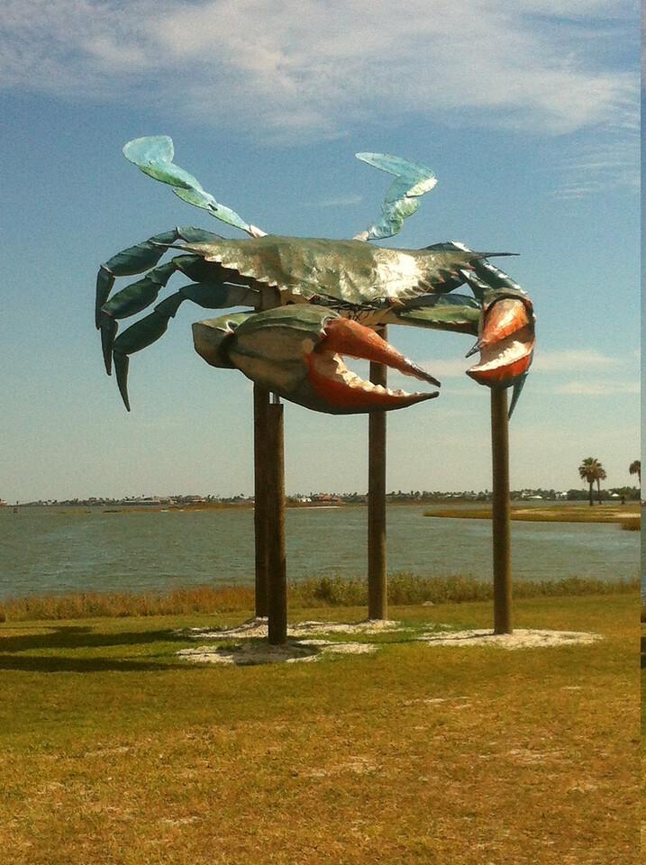 rockport crab
