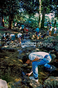 Paris, France - Young Teens in School Outing, Looking for Tadpole Specimens in Park Stream.