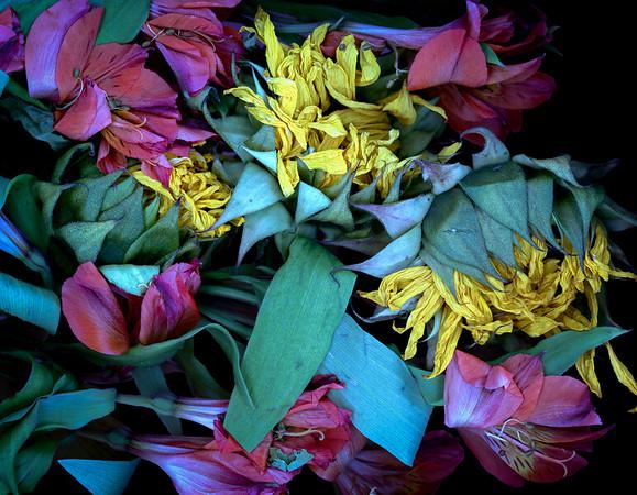 Bouquet Storm