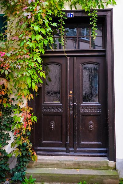 Ivy and Door