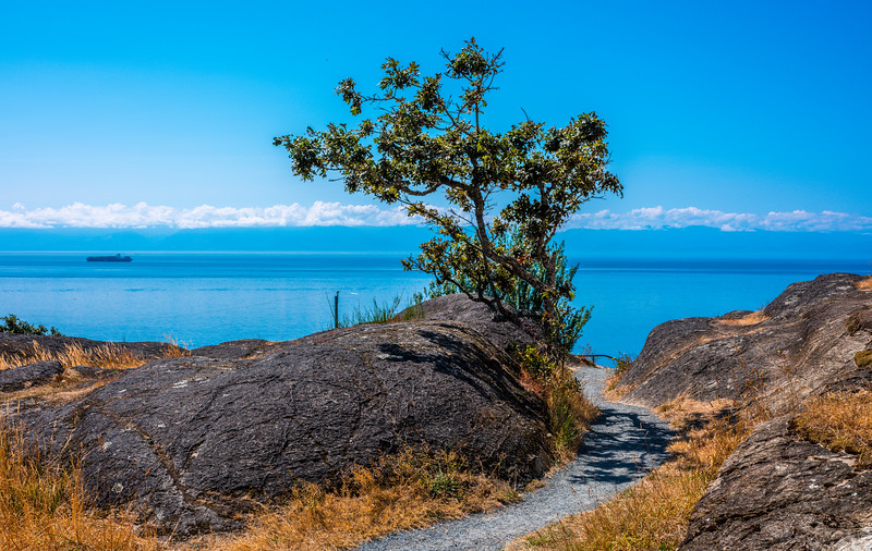 Gonzales Hill, Salish Sea and Garry