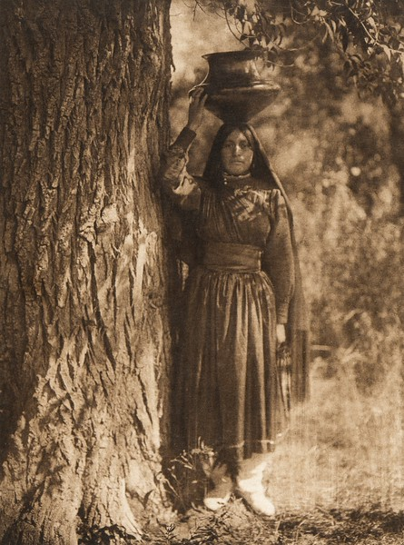 In the forest - Taos (The North American Indian, v. XVI. Norwood, MA, The Plimpton Press,  1926)
