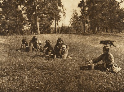 Picking blueberries - Cree (The North American Indian, v. XVIII. Norwood, MA, The Plimpton Press,  1928)