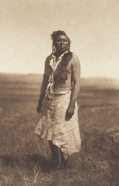 The Sun Dancer - Apsaroke (Indians of North America, v. IV. Cambridge, MA: The University Press, 1909)