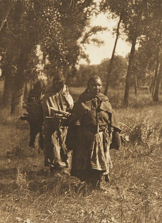 Wood Gatherers - Cheyenne (The North American Indian, v. VI. Cambridge, MA: The University Press, 1911)