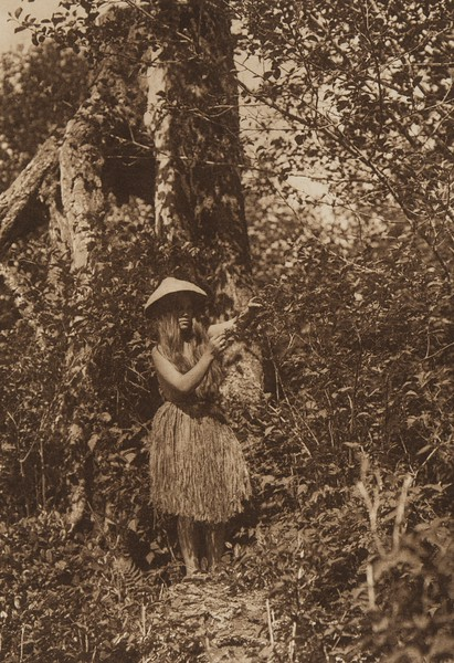 Quinault Berry Picker (The North American Indian, v. IX. Norwood, MA: The Plimpton Press, 1913)