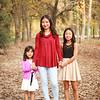Melissa Saesee Christmas 16-3778