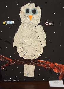 """Hannah Shelley, a home schooled student, fifth grade, submitted this mixed media piece titled """"Night Owl."""" Dawn Schabbing photo"""