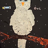 "Hannah Shelley, a home schooled student, fifth grade, submitted this mixed media piece titled ""Night Owl.""<br /> Dawn Schabbing photo"