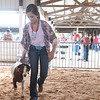Anna Wines shows her grand champion Boer goat at the 4H auction.<br /> Chet Piotrowski Jr. photo/Piotrowski Studios