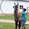 Kadin Watkins coaxes his llama through a Hula Hoop during the 4-H llama show at the Effingham County Fair. Kaitlin Cordes photo