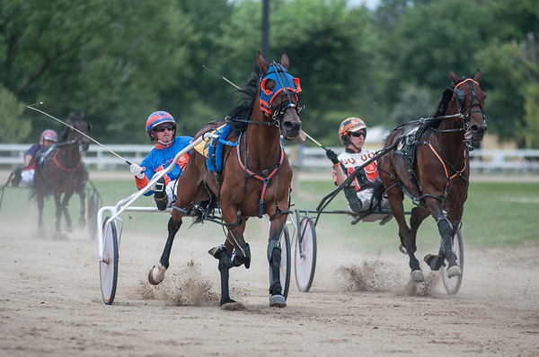 Harness Racing is a fair staple, as there are several races throughout the Effingham County Fair days. | Photo by Alexa Rogals