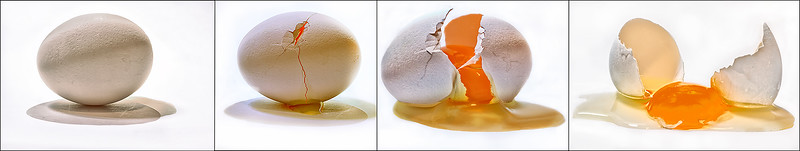"""Egg Quadtych"""