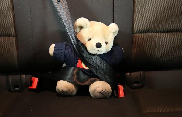 CalMac the Bear says 'Always wear your seatbelt!'