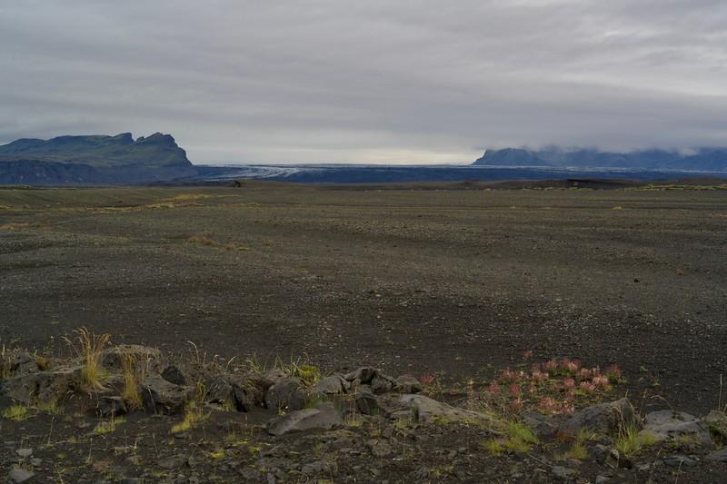 Ausläufer des Vatnajökull