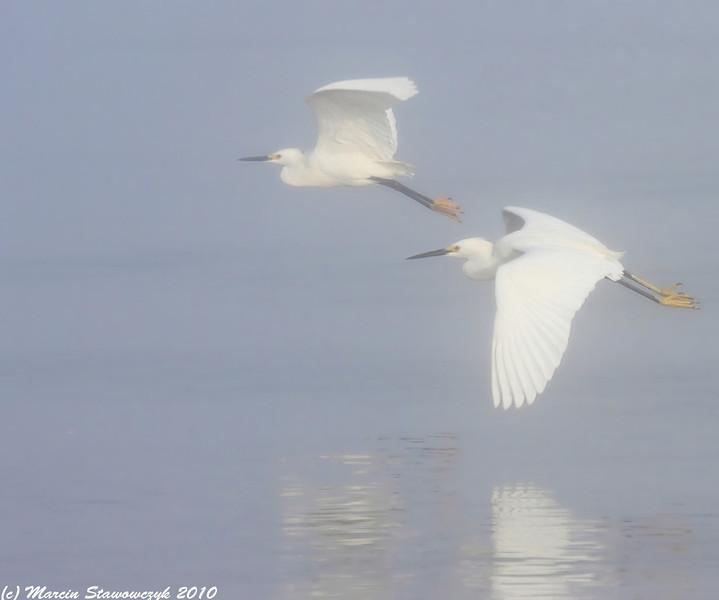 Mistic flight