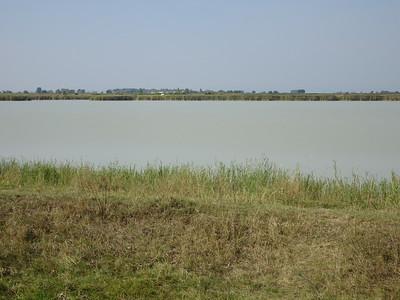 A Tó-csücske természetvédelmi terület