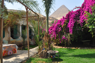 What a view from my Magical House in a small horse village outside of Cairo.